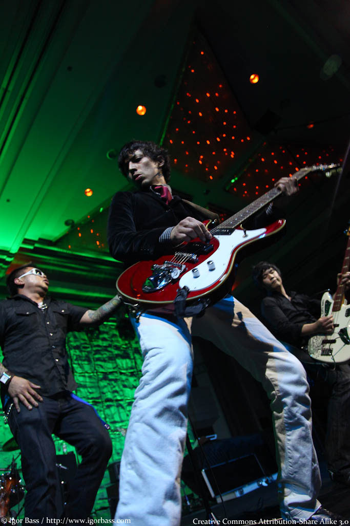 Image from: http://commons.wikimedia.org/wiki/File:The_slants_-_animecentral09.jpg
